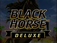 Black Horse Deluxe™