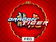 Dragon Tiger Pro